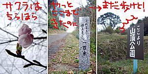 070326ni1.jpg