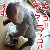 94円のラッコです☆