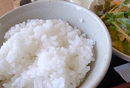 Caravan(キャラバン)☆新米ご飯♪