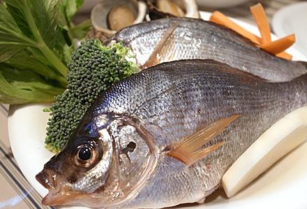 ドーファン・イーヴル☆美味かった知らん魚